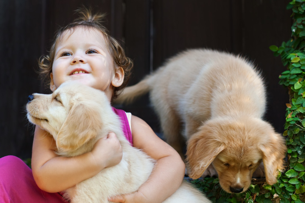 baby and puppies